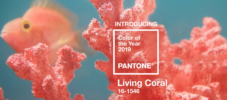 farbe des jahres 2019 ist living coral fries crossmedia